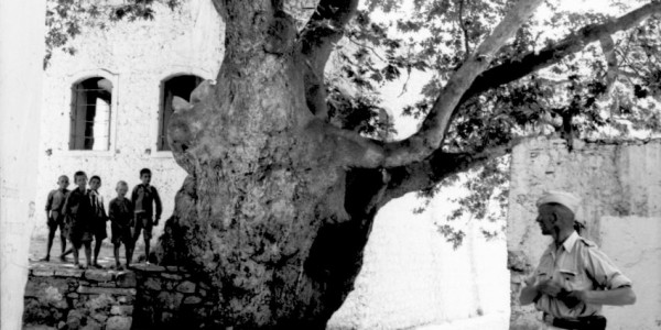 73 χρόνια από το προσχεδιασμένο Ολοκαύτωμα στη Βιάννο της Κρήτης: Ντοκουμέντο ξεσκεπάζει τα ψέματα των ναζί
