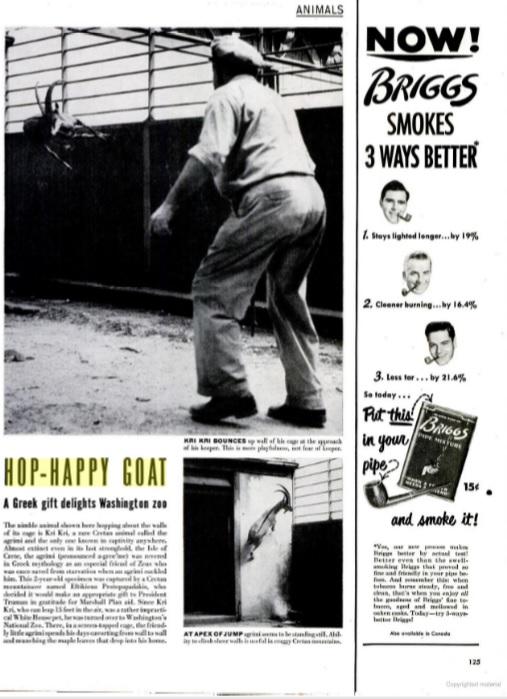 """Περιοδικό """"Life"""", 11 Σεπτεμβρίου 1950"""