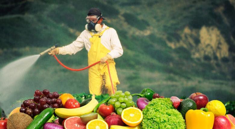 Ποια φρούτα και λαχανικά είναι πήκτρα στα φυτοφάρμακα