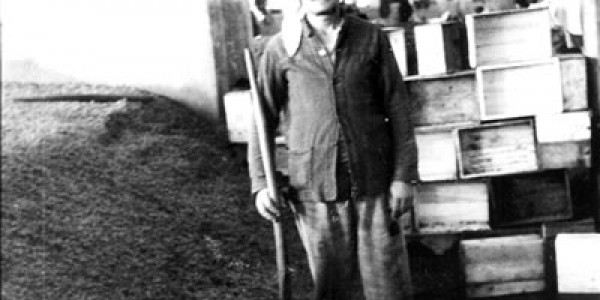 Αύγουστος 1935: Η απεργία των σταφιδεργατών στο Ηράκλειο - Οι εργάτες ζήτησαν ψωμί και η κυβέρνηση τους έδωσε 10.000 σφαίρες