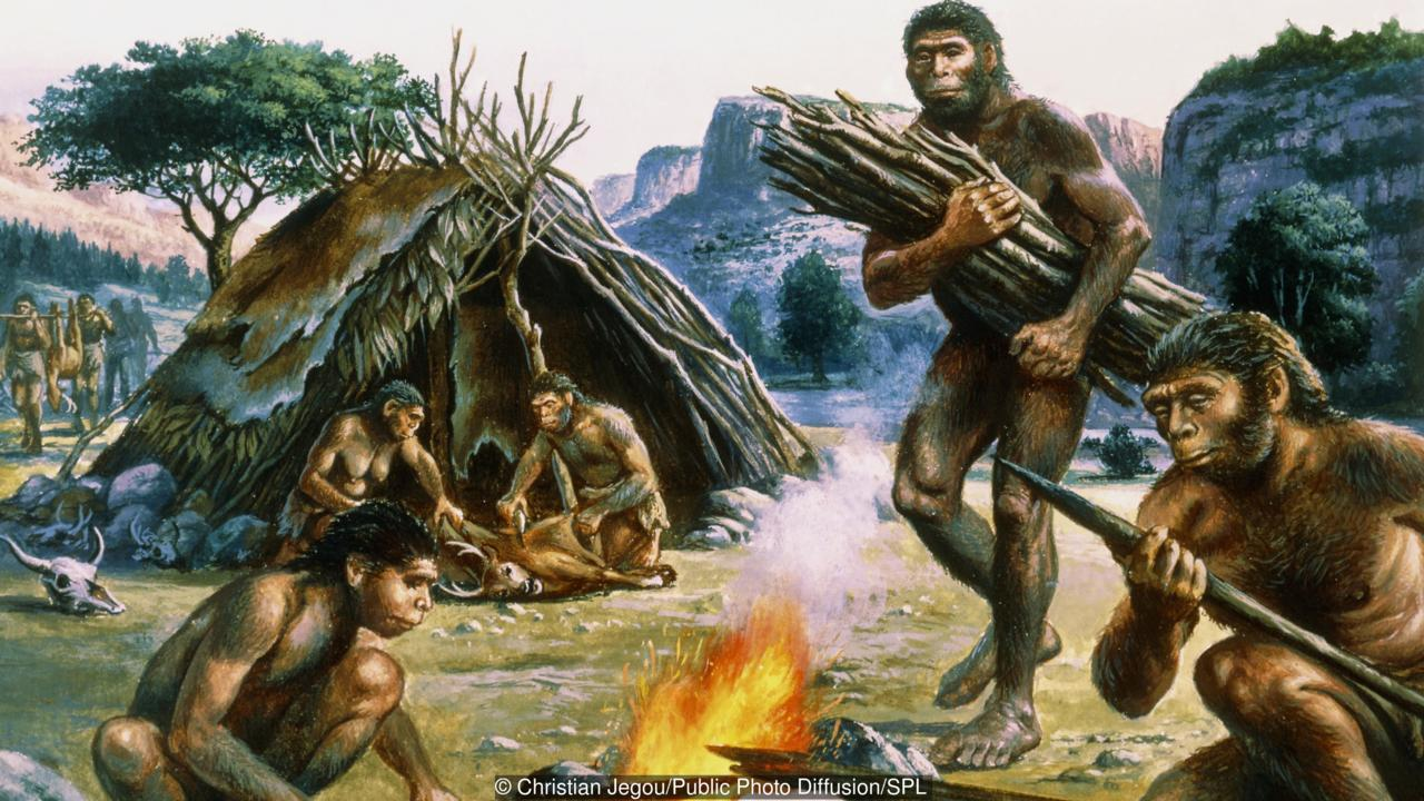 Tribe of homo erectus making weapons