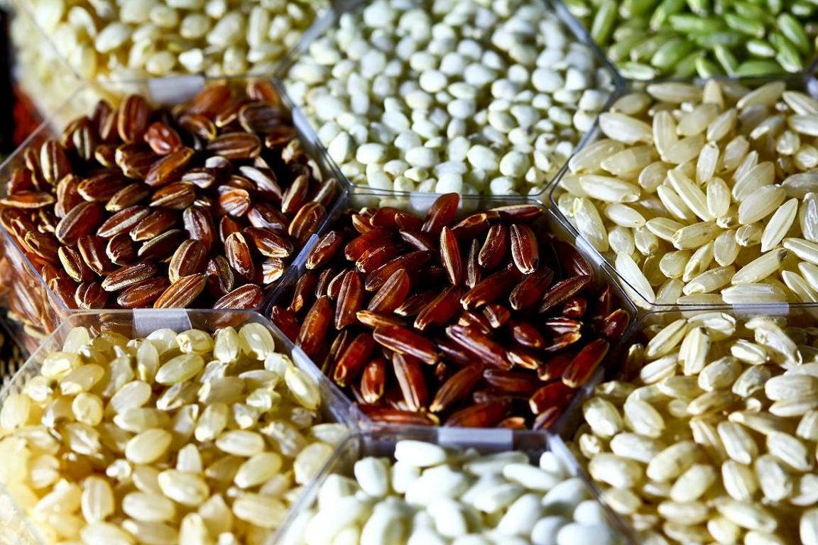 Μια πολύ χρήσιμη γνώση: Οδηγίες για να μάθετε πως να κρατάτε τους δικούς σας σπόρους