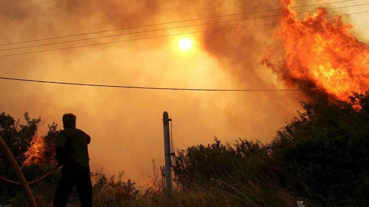 Επιβεβαιώθηκαν οι αρχικές αναφορές: Η ΔΕΗ υπεύθυνη για τη μεγάλη πυρκαγιά στο Βαμβακόπουλο το 2013 – Ξεκινούν προσφυγές στα δικαστήρια για αποζημιώσεις