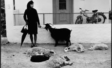 Οι εκπληκτικές φωτογραφίες του Κωνσταντίνου Μάνου από την Κρήτη της δεκαετίας του '60 στο Ιστορικό Μουσείο Κρήτης | Φωτός