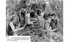 Τα ντοκουμέντα του μαρτυρίου: 70 φωτός από την καταστροφή στην Κρήτη που άφησαν πίσω τους οι Γερμανοί ναζί | Φωτός