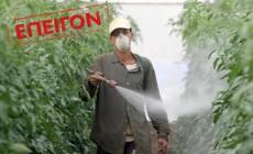 Συλλογή υπογραφών για την απαγόρευση στην Ελλάδα του ζιζανιοκτόνου Roundup της Monsanto