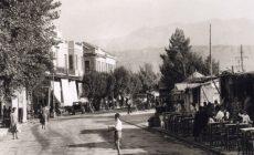 Βιβλιοπαρουσίαση Μαρία Αντωνιάδου-Μαριόλη «Λασπωμένοι Ονειρόκηποι – Αλήθειες που θάφτηκαν»