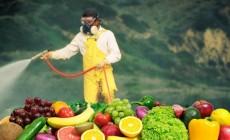 Φράουλες, σπανάκι, νεκταρίνια στα φρούτα και λαχανικά με τα περισσότερα φυτοφάρμακα