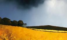Μια πρωτοποριακή προσέγγιση: Η συνάντηση αλληλοδιδακτικής γεωργίας για τους γεωσκώληκες στο Εργατικό Κέντρο Χανίων | Βίντεο