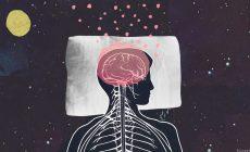 Πέντε διαδεδομένοι μύθοι για την Ψυχολογία