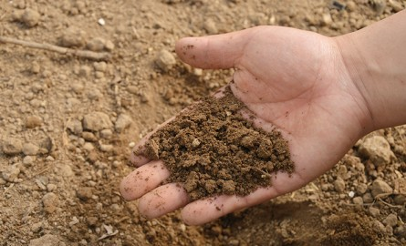 Αποτέλεσμα εικόνας για γόνιμο χώμα σε πολλά νησιά του Αιγαίου